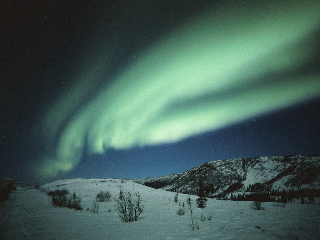 Northern Lights Dance